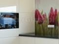 Grafika na szkle - tulipany